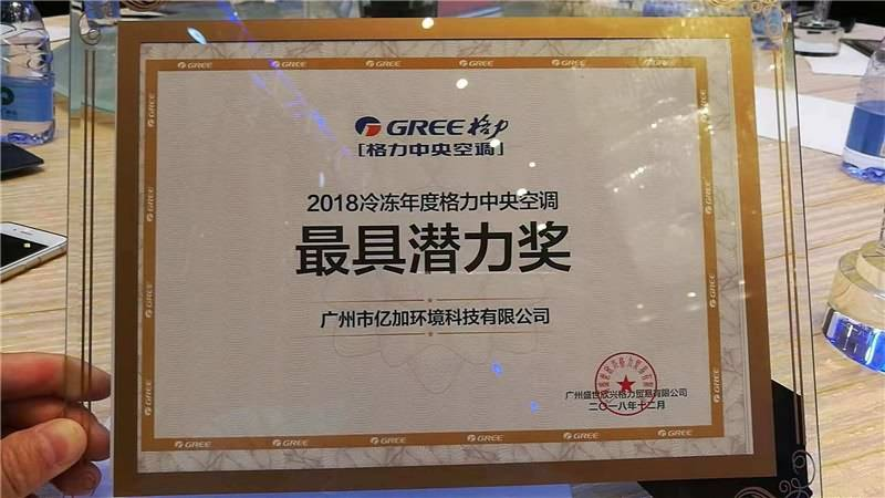 Airwoods Received Award of Most Potential Gree Dealer