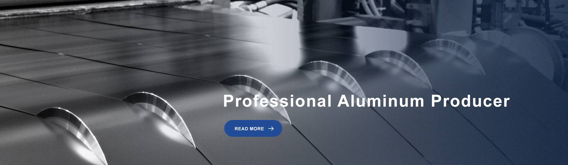 Professional Aluminum Producer