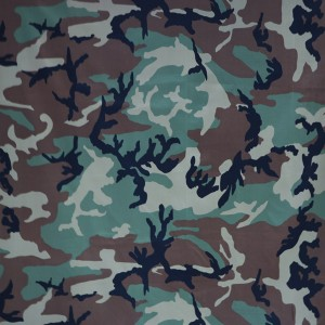 Army fabric for Moldova