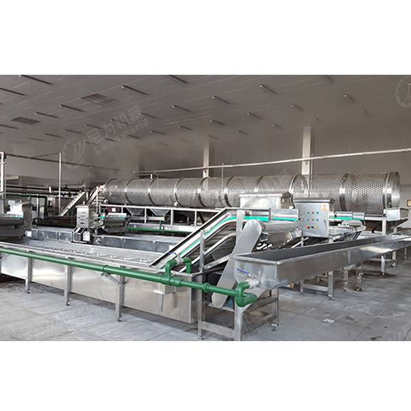 Professional Design Canning Mushroom Production Line -