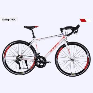 PDR700C 21 Speed MTB 26 Inch Mountain Bike with straight/cove handlebar bicycle