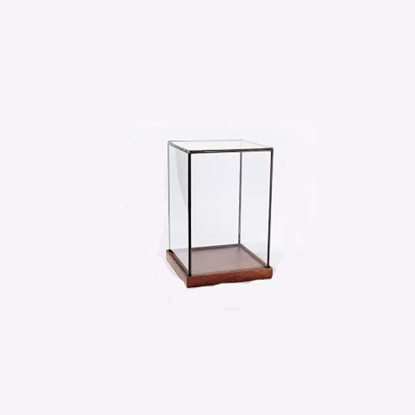 Manufactur standard Retail Hanging Cosmetics Wall Unit - clear display case – LongFuJin