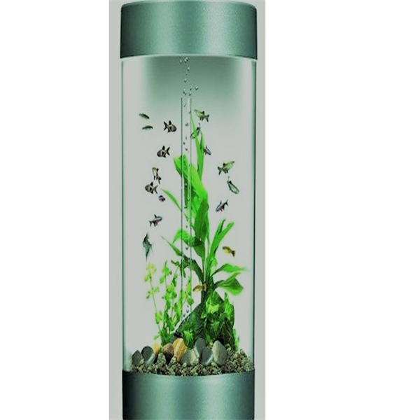 Factory selling Wall Mounted Display Units - fish aquarium – LongFuJin