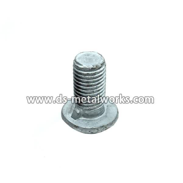 Cutting Edge Bolts Price - Round Button Head Guardrail bolts – Dingshen Metalworks