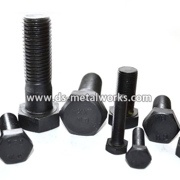 Top Suppliers DIN933 Din609 ISO4017 JIS1180 Metric Hex Head Bolts for Japan Manufacturer