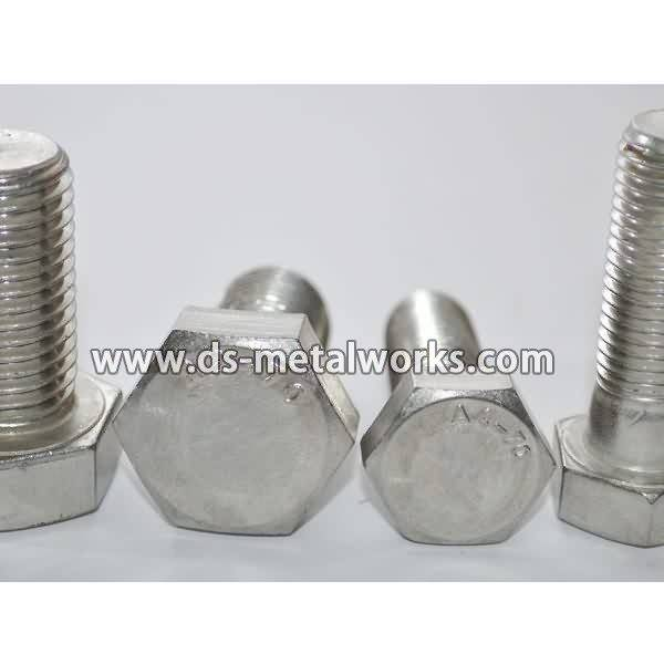 OEM manufacturer custom A2-70 A4-70 ASTM F593 Stainless Steel Hex Bolts to Congo Importers detail pictures