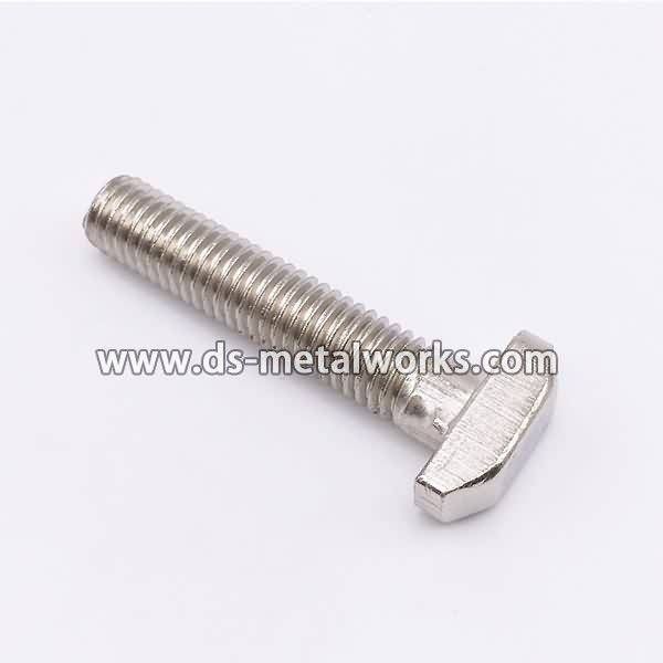 Hot sale good quality DIN261 DIN787 DIN186 ASME B18.5 AWWA C111-A21.11 T Bolts for Canberra Factories