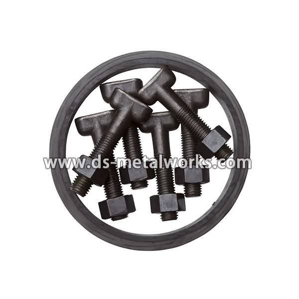 2017 Latest Design  DIN261 DIN787 DIN186 ASME B18.5 AWWA C111-A21.11 T Bolts for Thailand Manufacturers detail pictures