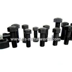 Best-Selling Track Shoe Bolts with Nuts for Argentina Manufacturers