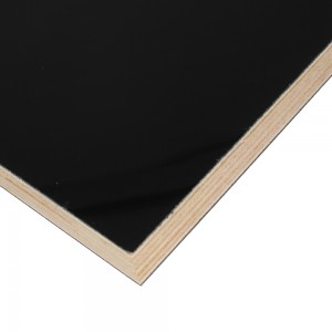 Edlon black color 10m 1220mmx2440mm acrylic coated plywood