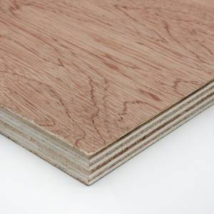 Edlon free samples raw color poplar veneer faced plywood