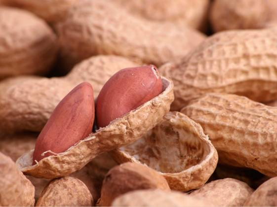 Researchers develop first functional targeted inhibitors of peanut allergens