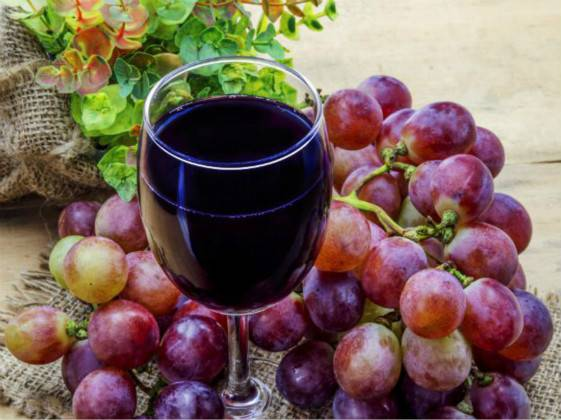 Resveratrol may be an effective intervention for lung aging