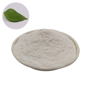 Factory Supply Pure Sodium Alginate Food Additive 9005-38-3 for Thickeners