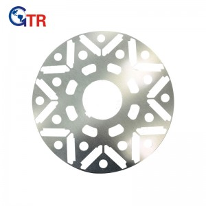 Rotor stamping for Rail Transportation Motor