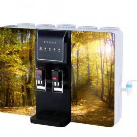 beautiful 5 stage RO water purifier with hot and cold water