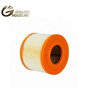High Quality Auto Parts 13717536006 air filter