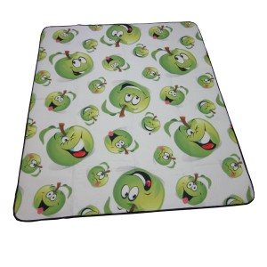 Picnic blanket with fruit topic