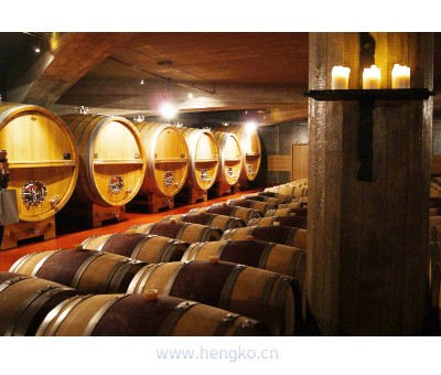 RHT-xx Digital relative humidity & temperature sensor to monitorings of humidity and temprature in wine cellars
