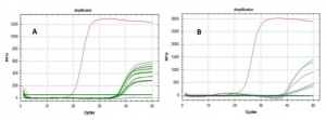 SARS-Cov-2 RNA Found on Particulate Matter of Bergamo in Northern Italy: First Preliminary Evidence