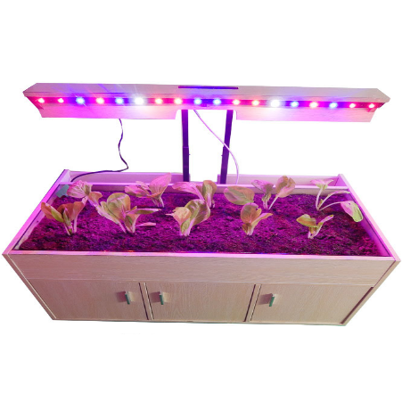What kind of environment is LED plant light most suitable for plant growth?