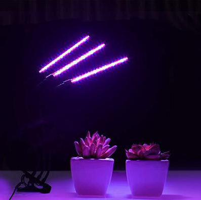 Sample actual LED plant light high efficiency uniform lighting plant?