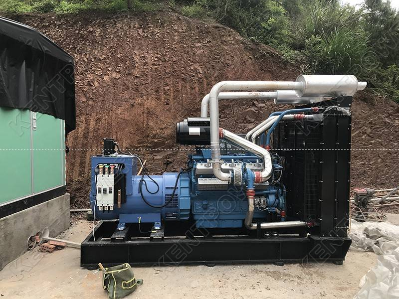 What Kind of Diesel Generator Set is Suitable for Farms