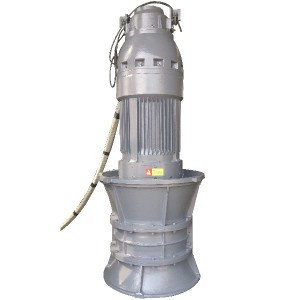 QZ Submersible Axial Phalla di-pump