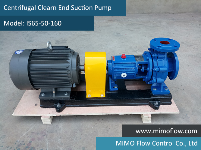 Good News!  End Suction Pump Finished and Exported to Colombia for Sample.