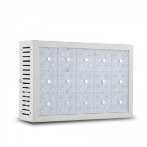 X300S LED Light Wuesse