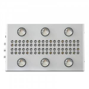 Noah 6s LED Grow Sgòthan