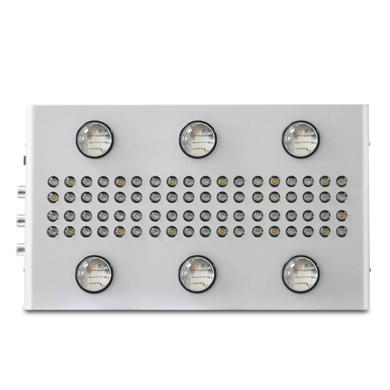 Noah 6S LED Grow Light Featured Image