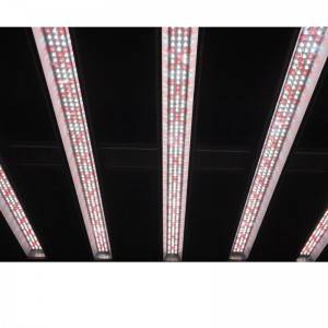 640W LED Grow Light Bar System