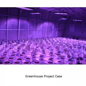 GAEA 240PCS/5W LED Grow Light