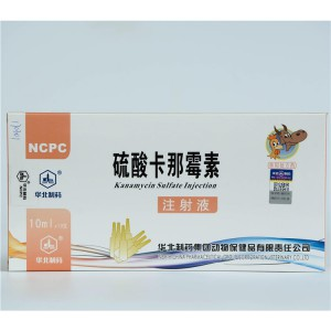 8 Year Exporter Dewormer For Dogs -