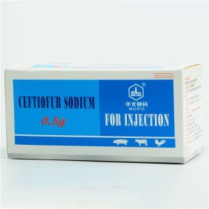 China OEM High Quality Hot Sale Florfenicol -