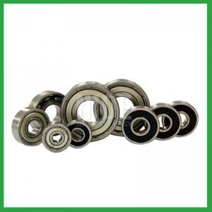 Non Standard Ball Bearings for electric motor