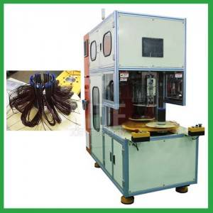 Automatic 2 working stations staotor coil winding machine for pump motor