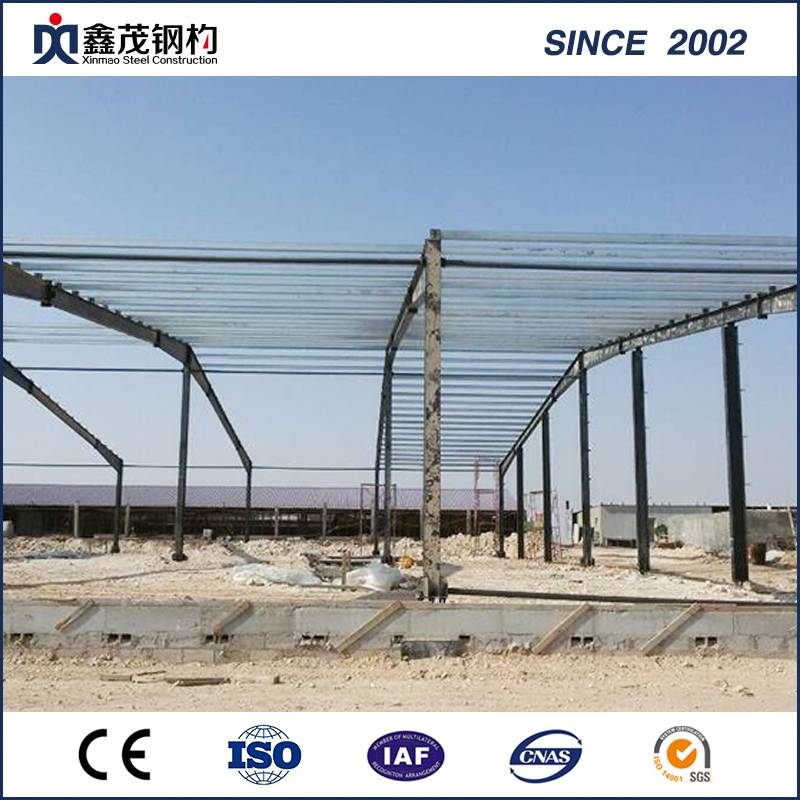 Steel Poultry House with H Section Steel Frame in High Strengthen
