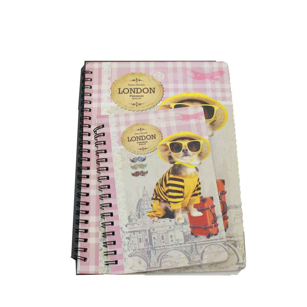 Renewable Design for Back To School Gift -