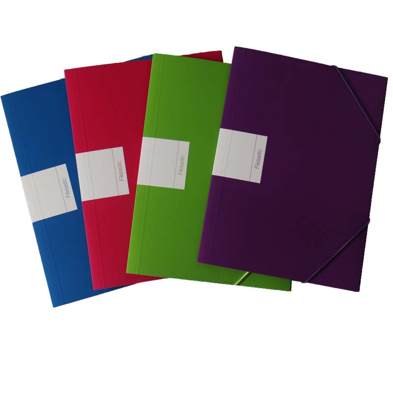 Ricky FF-R008 cheap price document file folder /file bag