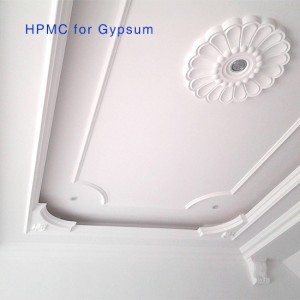 HPMC for Gypsum