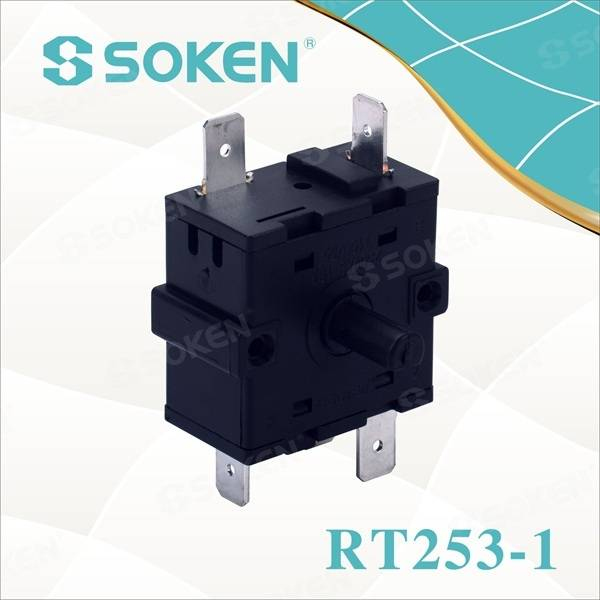 6 Position Rotary Switch for Appliances (RT253-1)