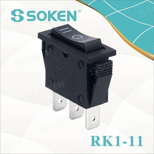 Special Design for Double Pole Rotary Switch -