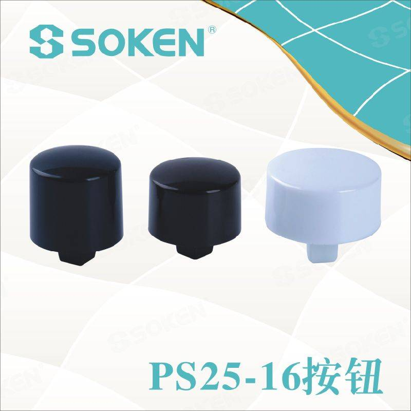 Soken Oven Push Button Switch PS25-16-2