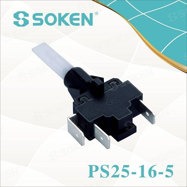 Soken Self-Locking Steamer Push Button Switch PS25-16-5 2pole