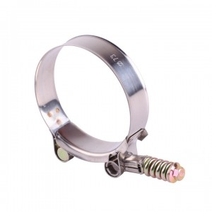 T Type Pipe Clamp With Spring