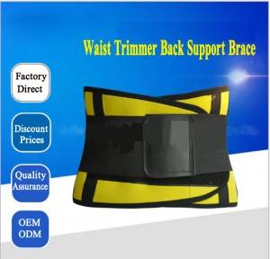 Waist Trimmer Back Support Brace WS-05