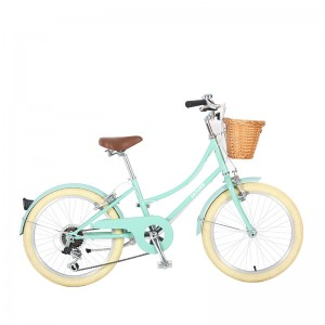 WHOLESALE HOT SALE CITY BIKE OEM BIKE