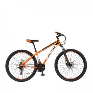 2020 Chinese New Aluminum Frame Mountainbike